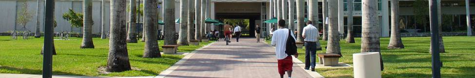 University of Miami to Launch an Online MBA